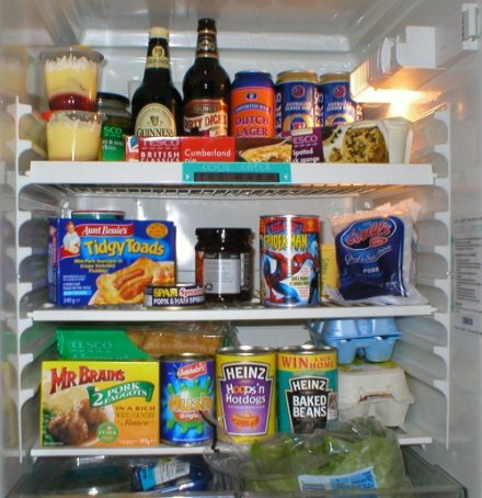 42f6da8417a11 fridge